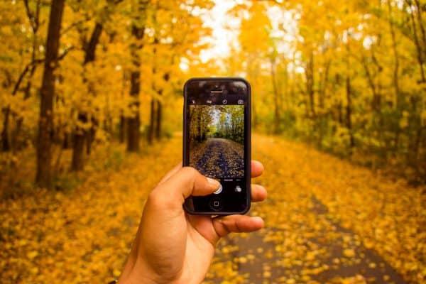 Die 7 besten Instagram-Motive im Herbst