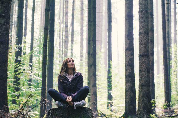 Shinrin Yoku – Der Wald als Wohlfühloase