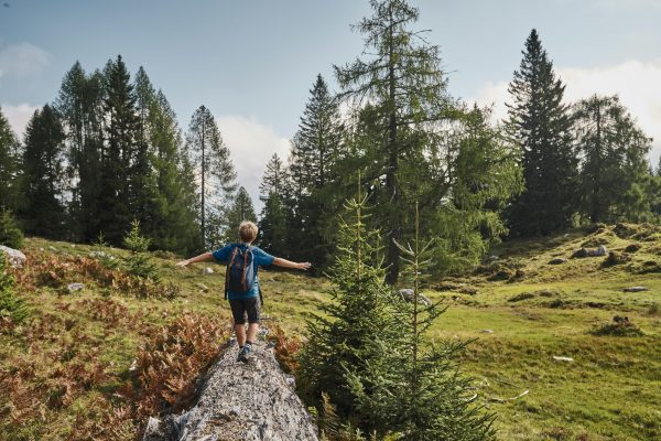 Up the mountain! Family-friendly hiking trails in Carinthia and South Tyrol